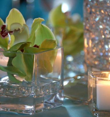 Csorchids-Events2