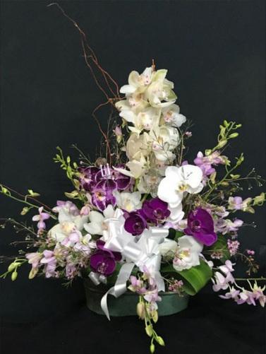 Csorchids-Gifts8