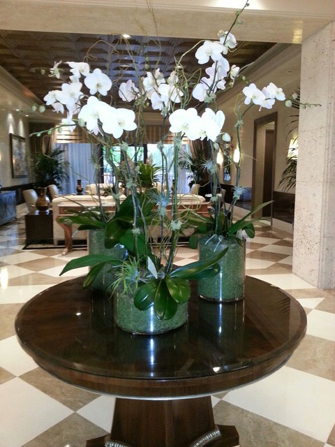 Leasing of Orchid Arrangement