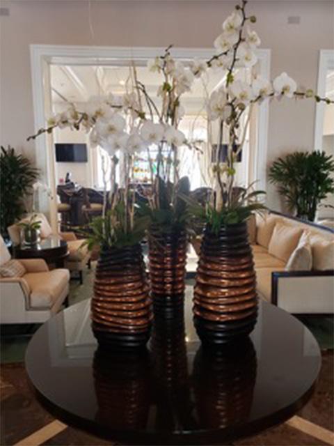 Residential Orchid arrangement